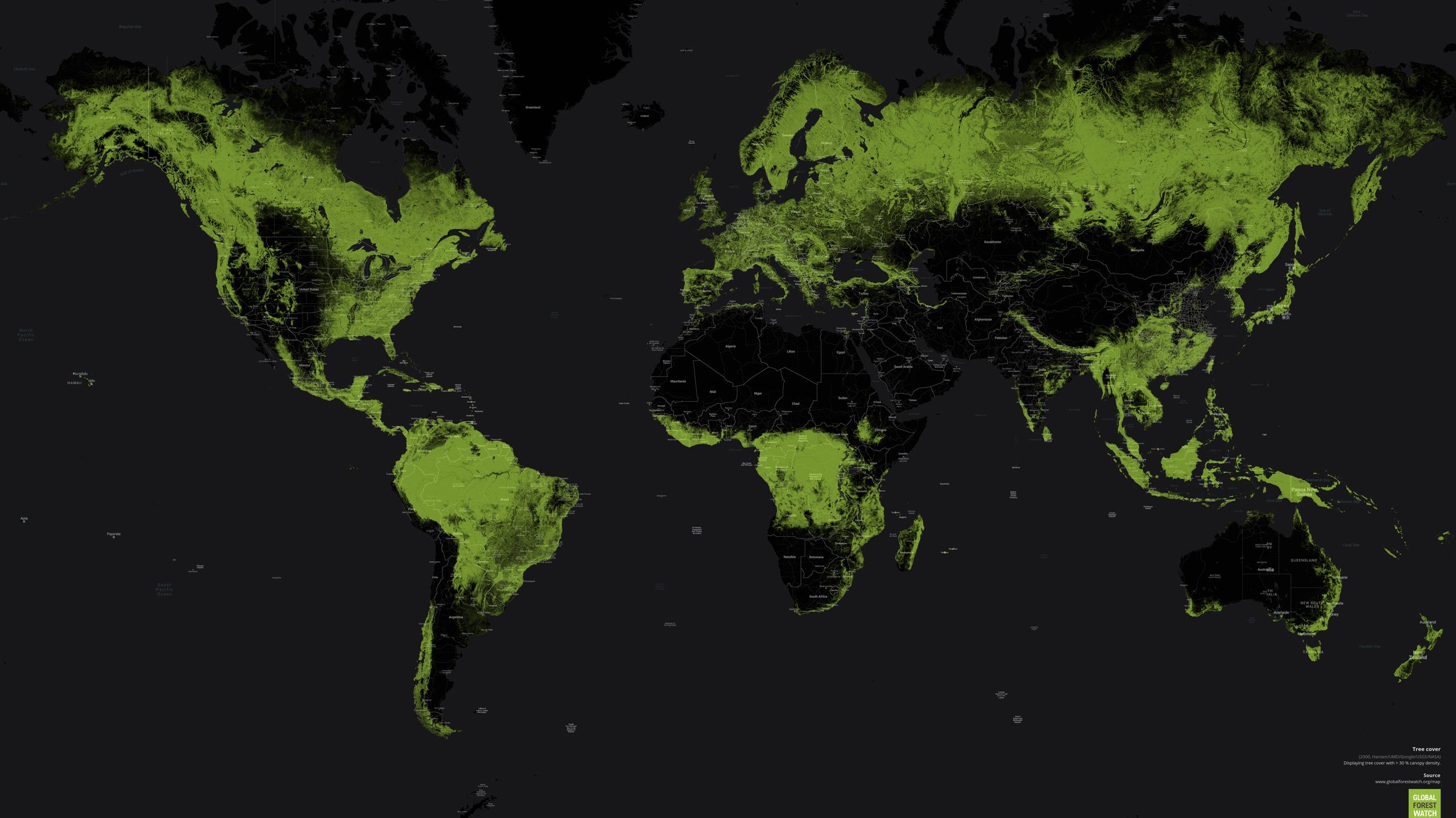 Påvirkningen på verdens skove